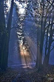 Podzimní-ráno_9_3416_hdr